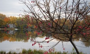 Fall is Fading on Fisk Lake