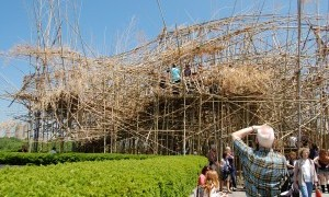 Care to Climb: Big Bambu in New York City