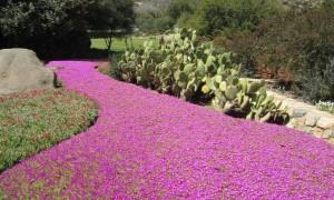 Rancho La Puerta is Heaven on Earth