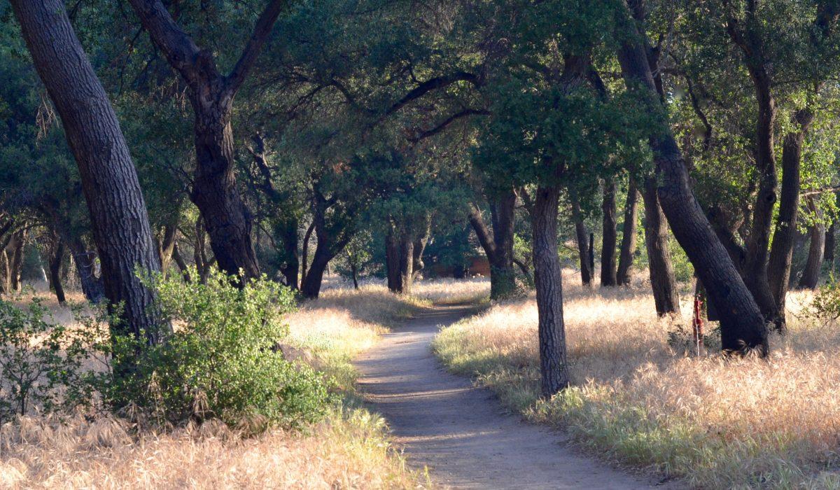 Rancho La Puerta Transitions