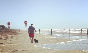 Guest Blogger Returns to Galveston