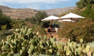 Rancho La Puerta is Camp for Grown-ups