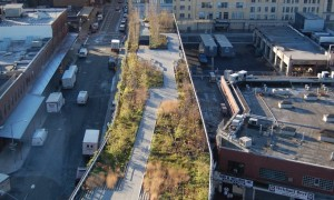 Head up to the High Line–an urban park in the sky