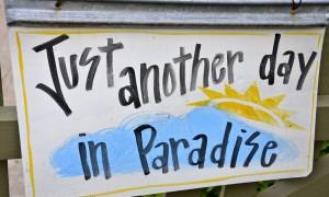 Jam-packed weekend of visual treats on Leelanau Peninsula