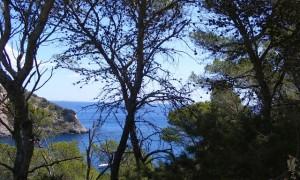 Ibiza Meandering