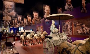 Chicago's Field Museum features interesting exhibits this summer