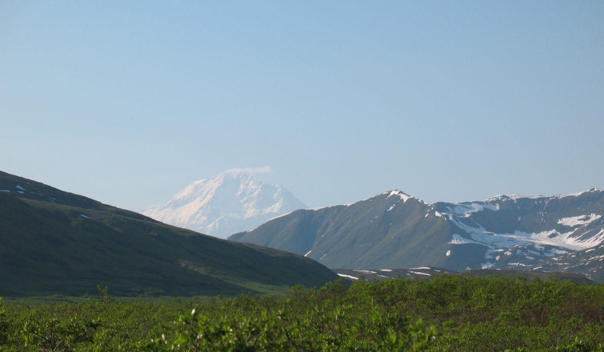 Denali: The Mountain
