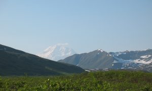 Denali: The Mountain