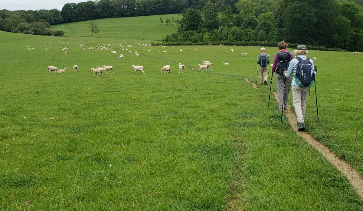 The Cotswold Way (Part 3)